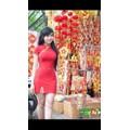 Đầm Ôm Sườn Xám Đón Xuân Xinh Xắn-F800242