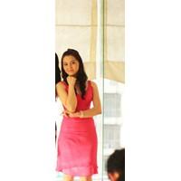 KHUYẾN MÃI HOT - ĐẦM ÔM - 4126