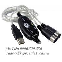 Cáp USB 2.0 to 2 MIDI Unitek Y156