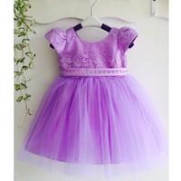 Đầm ren xòe công chúa dễ thương NX782