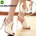 Giày cao gót nữ cao cấp mới hàng xuất khẩu L12H127