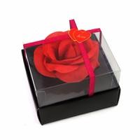 Quần chip hoa hồng lãng mạn