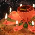 Nến sinh nhật nở hoa phát nhạc hoa sen