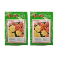 Hạt giống Hoa cúc vạn thọ pháp gói 50 hạt