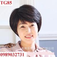 Tóc giả trung niên - TG85
