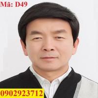 Tóc Giả Nam Trung Niên Hàn Quốc Tặng Lưới - D49