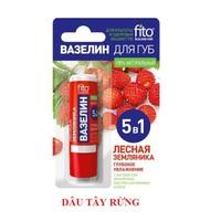 Son vaseline dưỡng môi FITO 5in1 siêu dưỡng ẩm