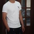 áo thun trắng trơn nam cao cấp