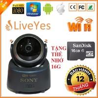 Camera Wifi Sony Full HD và Thẻ nhớ 16G