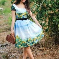 Đầm Váy Công Sở Hàn Quốc D429