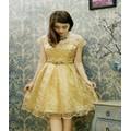 Đầm Kim Sa Nhũ Ánh Kim
