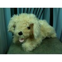Thú nhồi bông Chó vàng lông xù G016