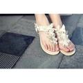 Giày bướm xinh