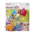 Cá phun nước Munchkin