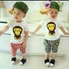 Bộ bé trai in khỉ