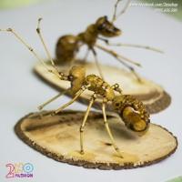 Đôi Kiến Vàng handmade - KV1401