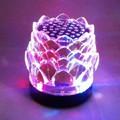 Loa đèn LED bông sen