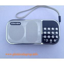 Loa CRAVEN CR22