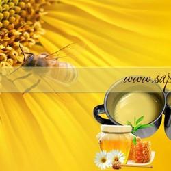 Sáp wax chiết xuất sữa ong chúa
