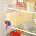 Bình Nước Tủ Lạnh 3 Lít