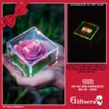 Hộp hoa hồng Handmade Đỏ