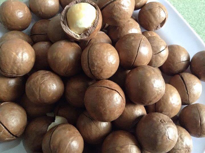 Hạt Mắc Ca Úc loại nhân sấy muối 4