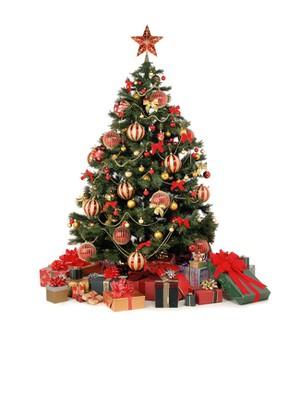 Rực Rỡ Đêm Giáng Sinh