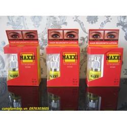 Thuốc Mọc Lông Mày Maxxi
