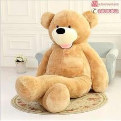 Gấu bông khổng lồ 1.6m Costco