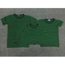 Combo 3 áo thun gia đình  đen sọc xanh lá - GĐ 645
