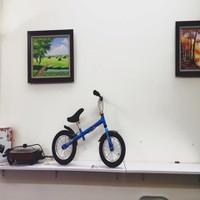 Xe đạp tập cân bằng cho trẻ em