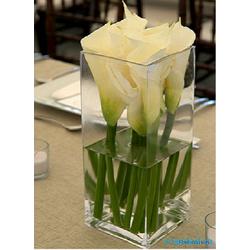 Lọ hoa thủy tinh vuông 15*40