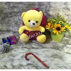 Balo gấu bông cho bé VS07