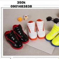 giày da đủ màu