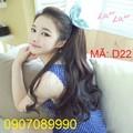 Tóc giả cột đuôi Hàn Quốc -- D22
