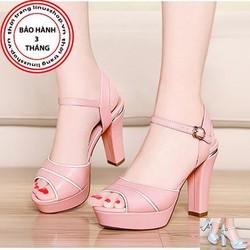 Giày cao gót da phối viền - LN903