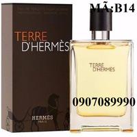 Nước Hoa HERMES TERRE DHERMES 100ml B14