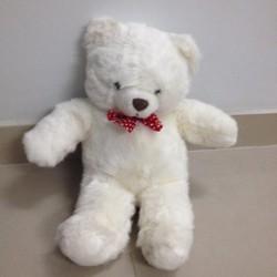 Thú nhồi bông Teddy bear trắng nơ bi đỏ cực yêu G041