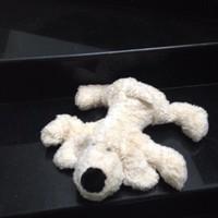 Thú nhồi bông Chó lười trắng lông cực mịn G013