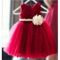 Đầm công chúa sắc đỏ ngày xuân 341