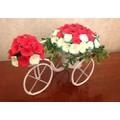 Xe đạp hoa giấy