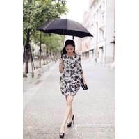 Đầm Váy Công Sở Hàn Quốc D433