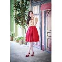 Đầm Váy Công Sở Hàn Quốc D434