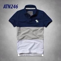 Áo thun Abercrombie phối màu mẫu mới 2015 - KATN246