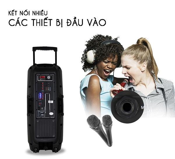 Loa Kéo Bluetooth Temeisheng A73, đen 4