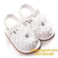 Giày tập đi bé gái G567