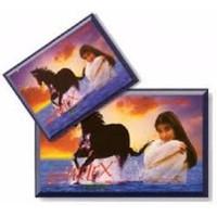 Simplex Ngựa Hoang 5 hộp X 3 cái