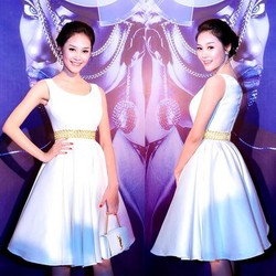 Đầm trắng xòe giống Á hậu linh chi - D858