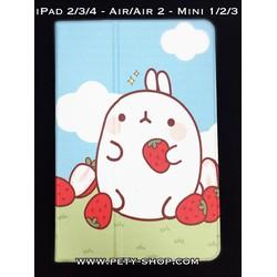 Bao da xoay Molang iPad Air