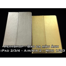 Bao da màu ánh iPad Air 2